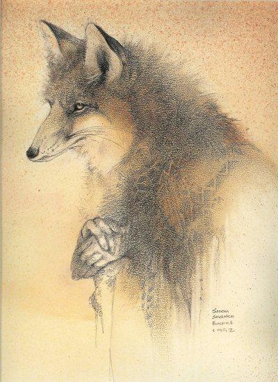Fox Trickster by Susan Seddon Boulet