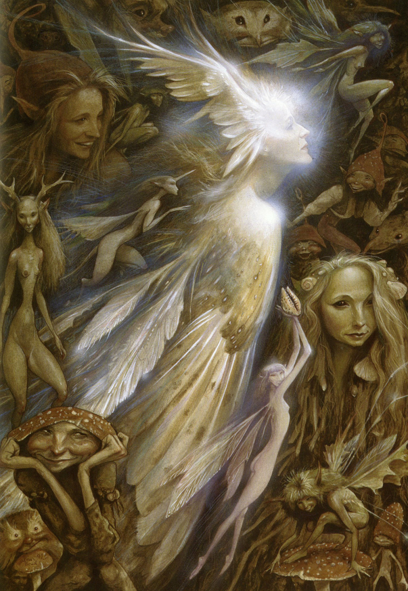 The Owl Faery by Brian Froud