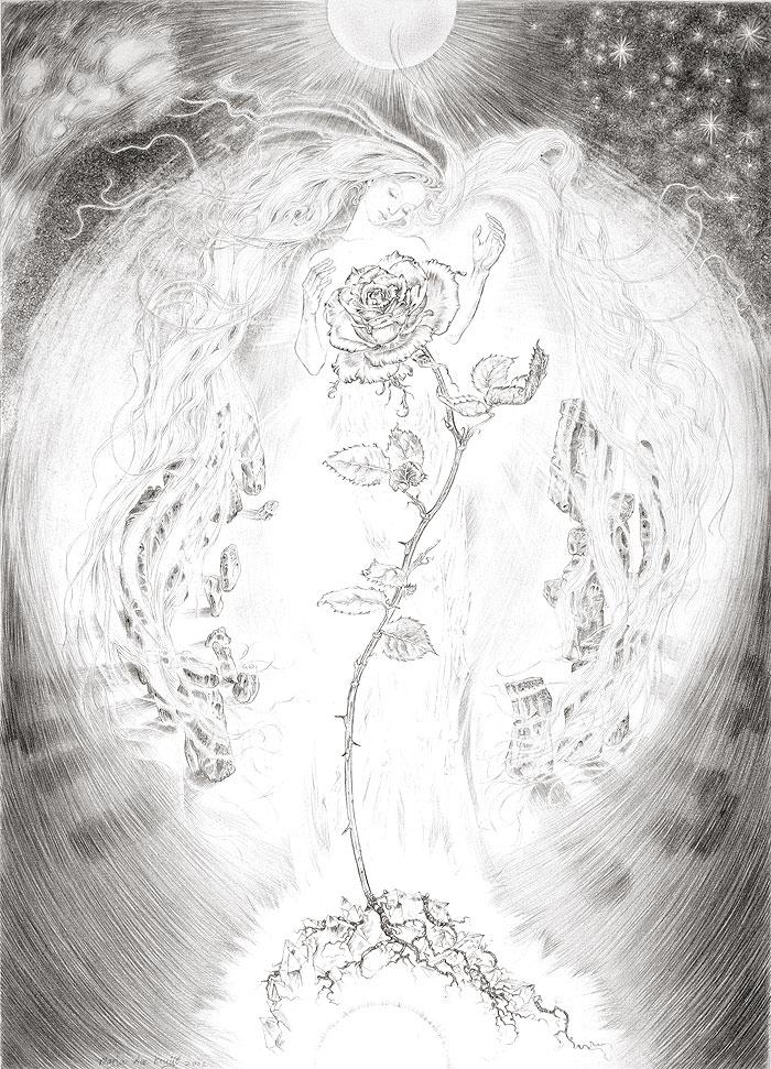 The Rose of Stonehenge by Marja Lee Kruyt