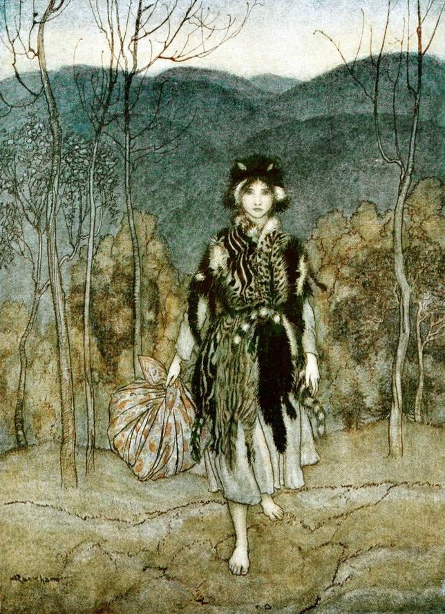 Catskin by Arthur Rackham