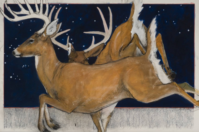 Deer by Donna Howell-Sickles