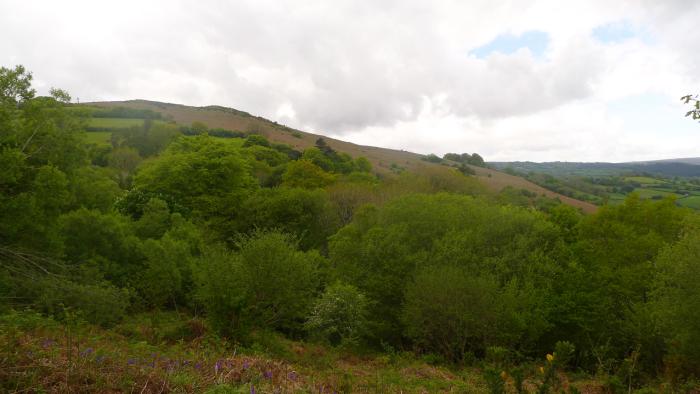 Meldon Hill,Chagford