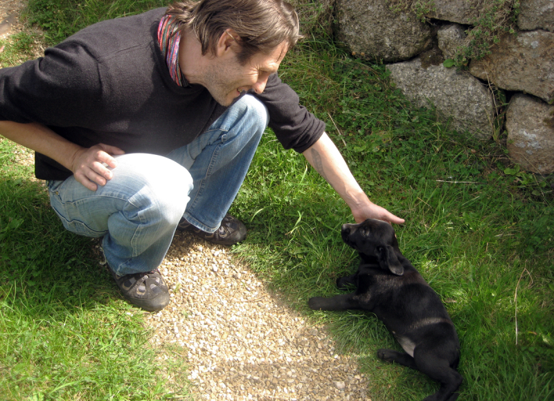 Howard and Tilly  2009