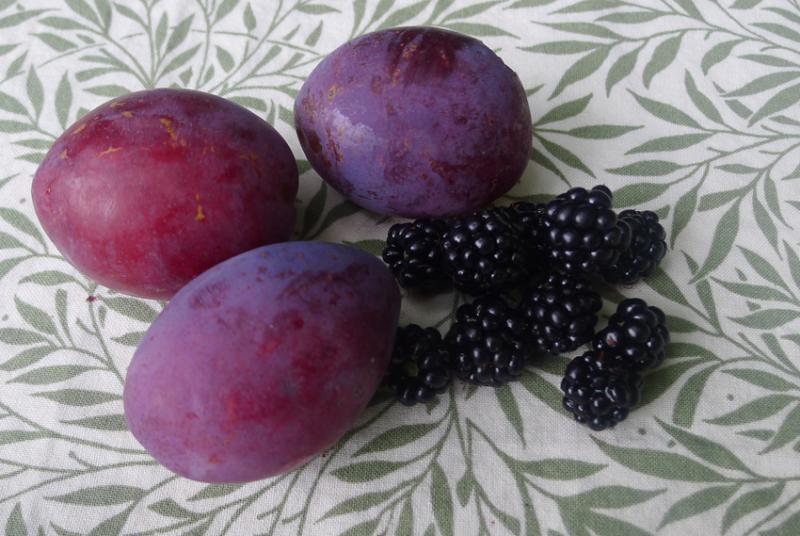 Plums and blackberries