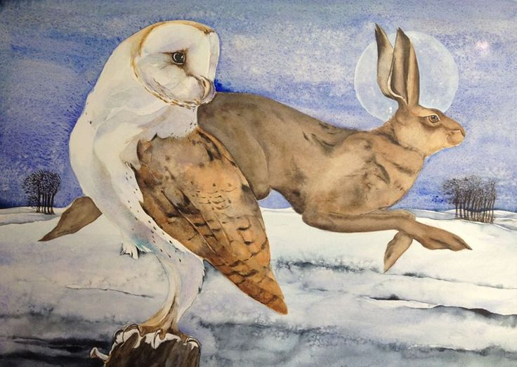 Owl and Hare by Jackie Morris