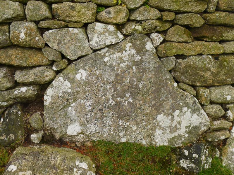 Stone wall, Dartmoor