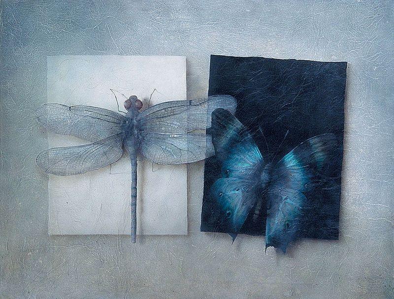 Insectia: Asymmetry by Julia Gukova