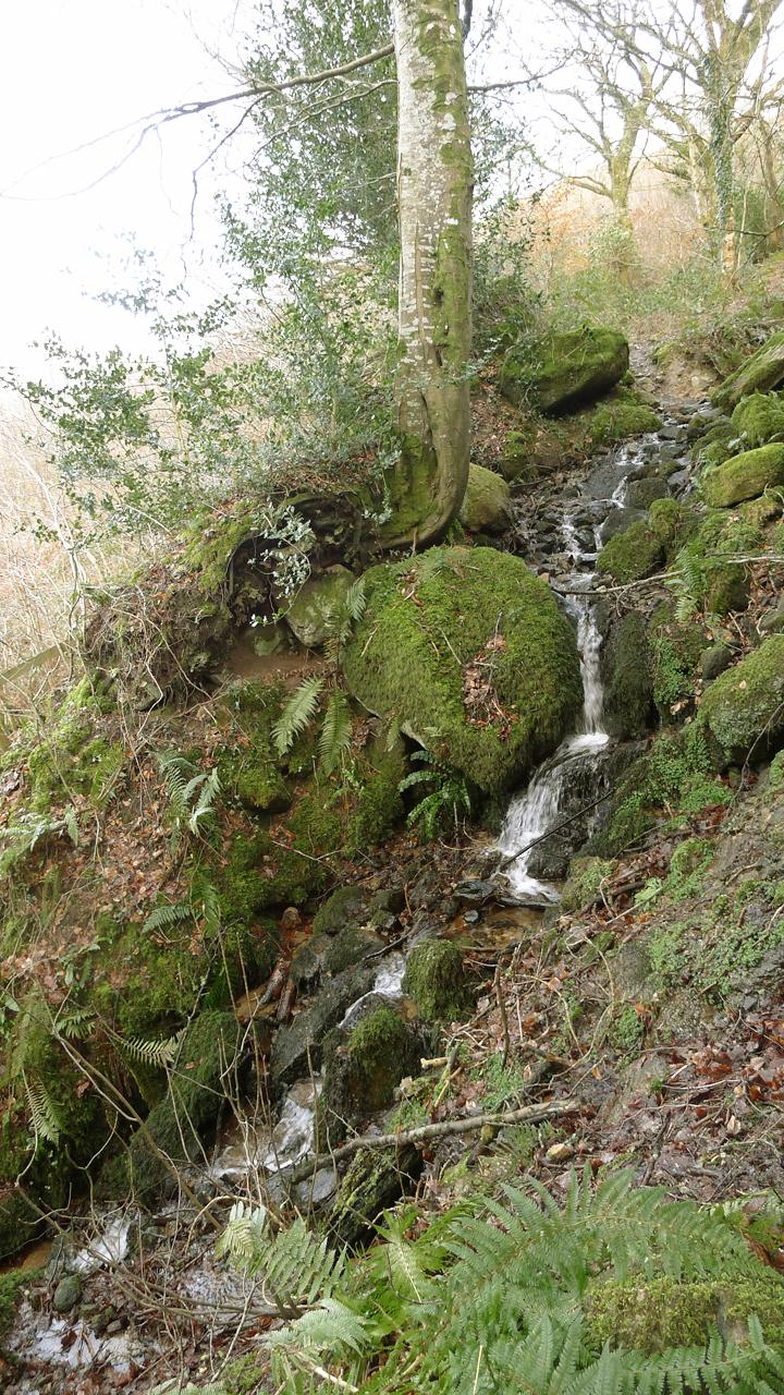 Waterfall on Nattadon Hill