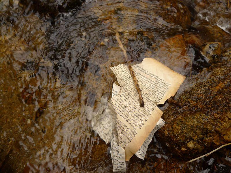 Wood & Water 16