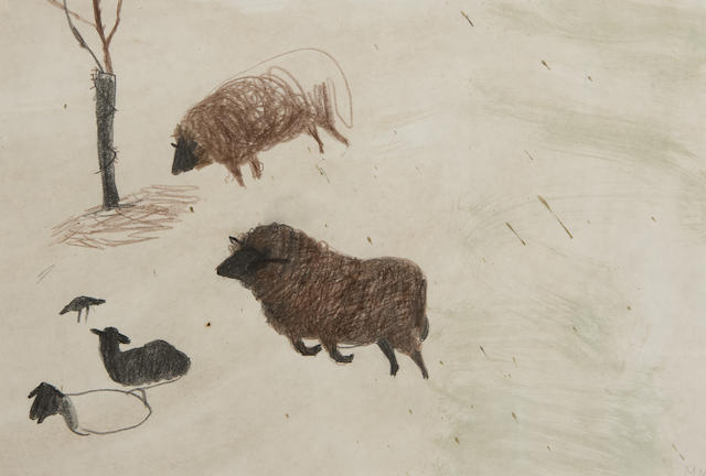 Study of sheep by Mary Newcomb