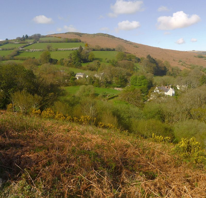 Meldon Hill, viewed from Nattadon Hill