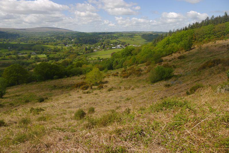 Hillside 3