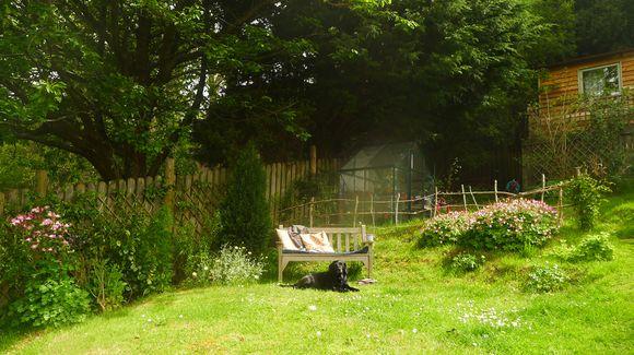 Summer Bench 1
