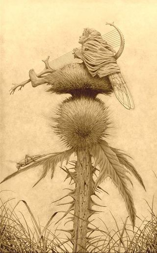 Thistledown by Edward Binkley