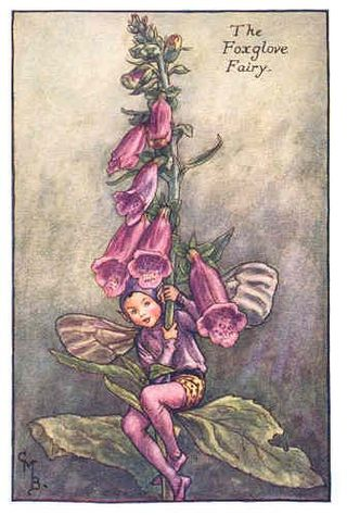 Foxglove Fairy by Cicely Mary Barker