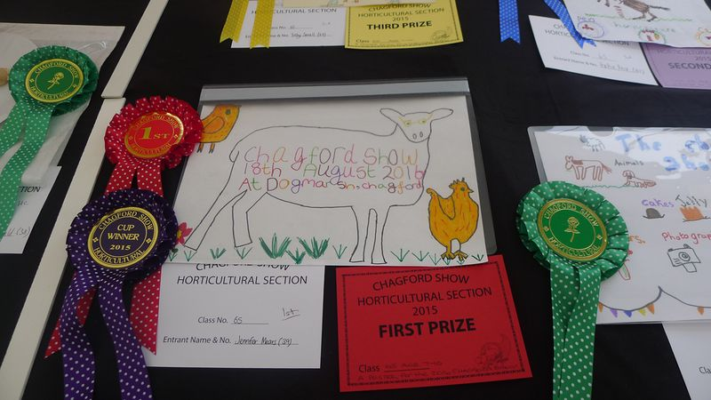 Prize-winning children's drawings