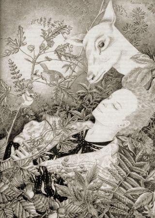 The White Deer by Adrienne Segur