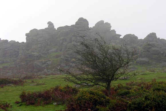 Hound Tor, photograph by Phillip Capper
