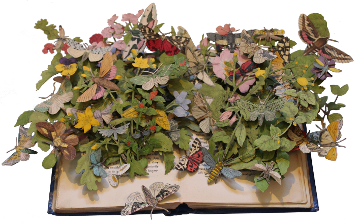 Book sculpture by Kerry Miller