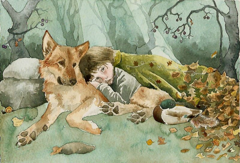 Wolf Boy by Danielle Barlow