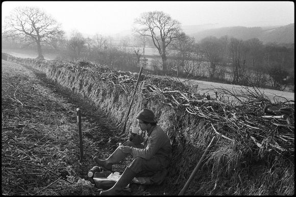 Hedger's lunch break by James Ravilious