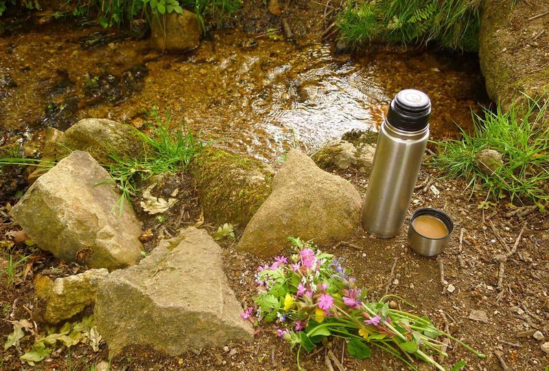 Coffee and wildflowers by the stream