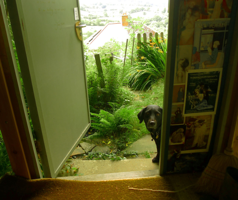 Tilly at the door