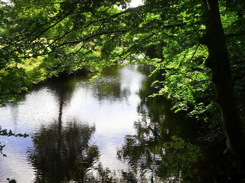 River 11