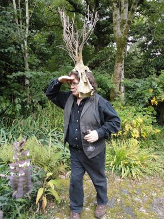 Brian, looking for fairies