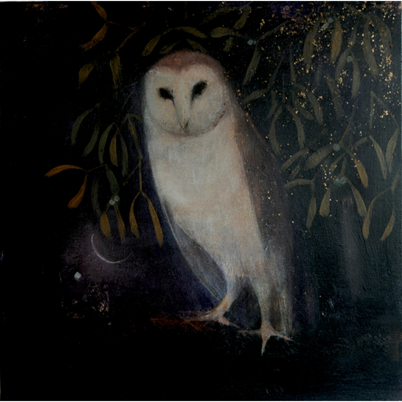 The Soft Hush of Night by Catherine Hyde