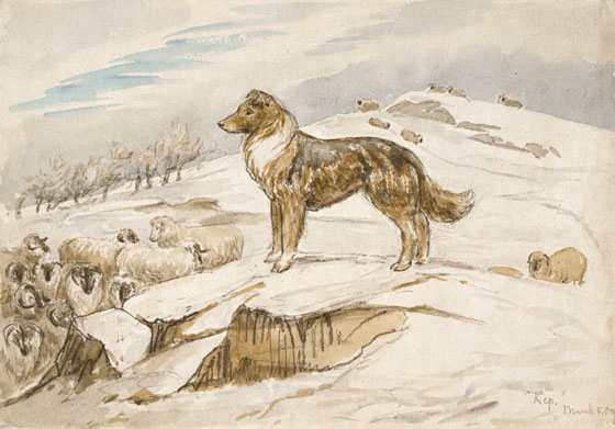 Shep guarding the sheep by Beatrix Potter