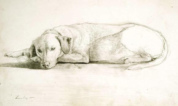 Andrew Wyeth dog sketch