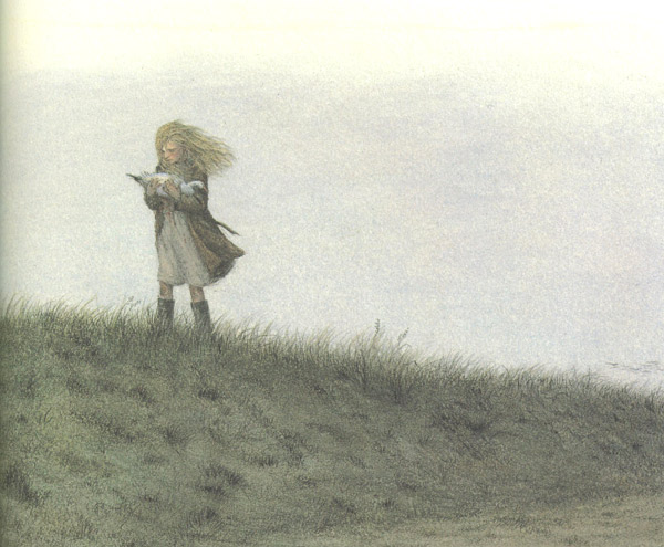 The Snow Goose by Angela Barrett