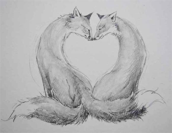 Fox Heart drawing by Jackie Morris
