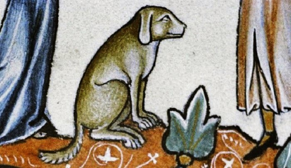 A dog from a medieval bestiary