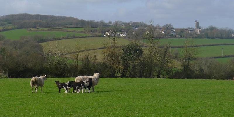 Beautiful Lowton Farm