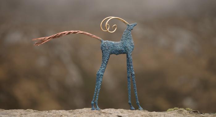 Achill Goat
