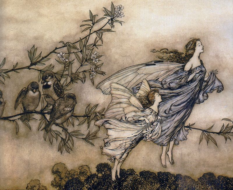 The Fairies' Tiff with the Birds by Arthur Rackham