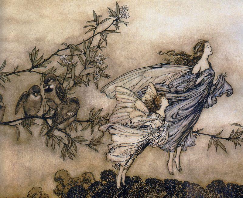 The Fairies' Tiff with the Birds by Arthur Rackham