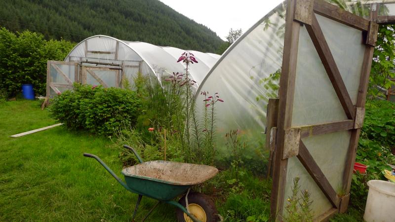 Polytunnels  Corrary Farm
