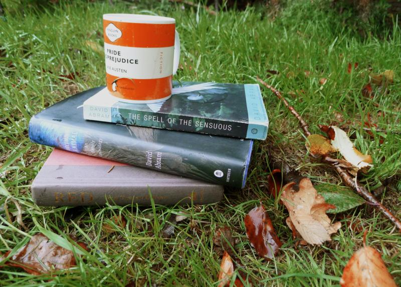 Books by David Abram