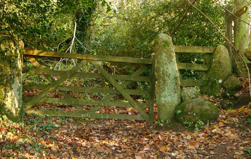 Nattadon Gate 3