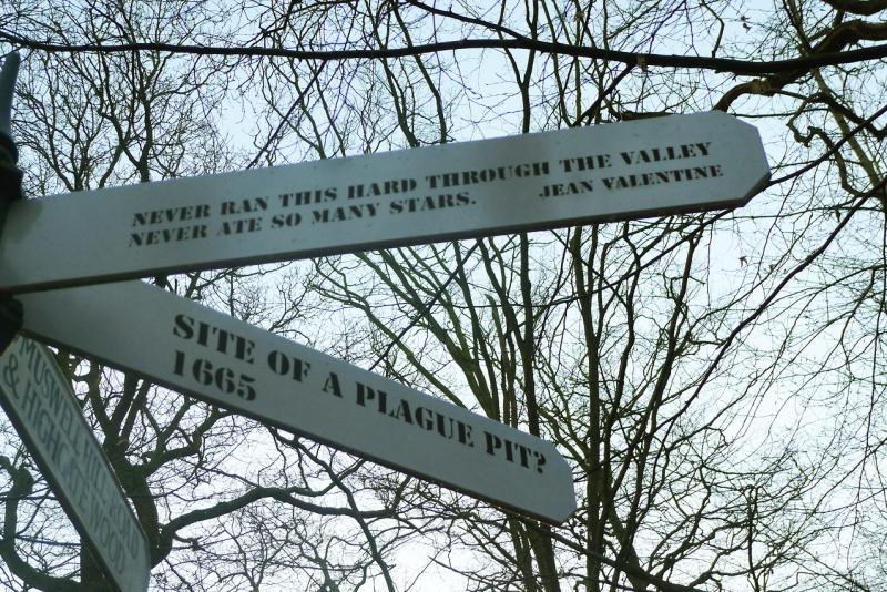 Signpost 6
