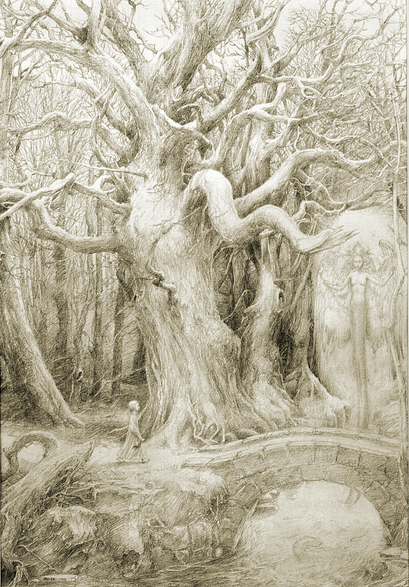 A Walk in the Woods, copyright by by Alan Lee, all rights reserved
