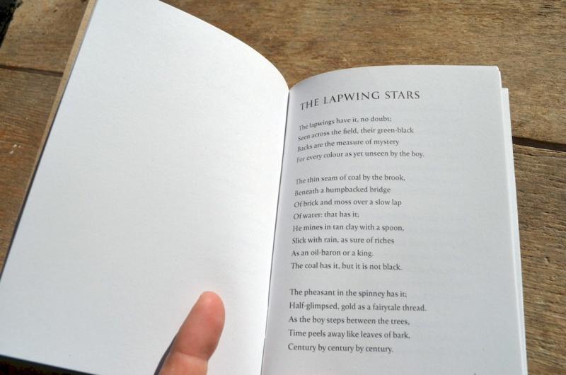 Lapwing Stars