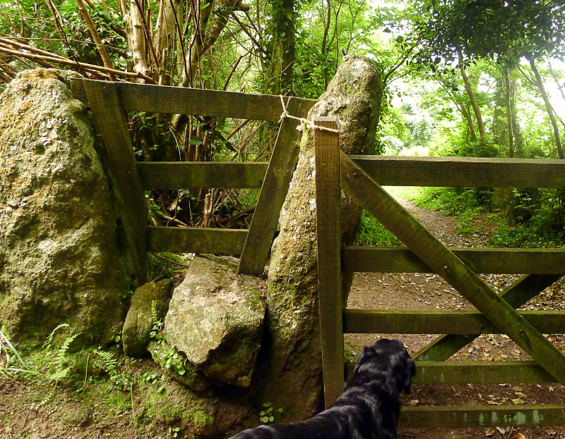 Go over the stile,