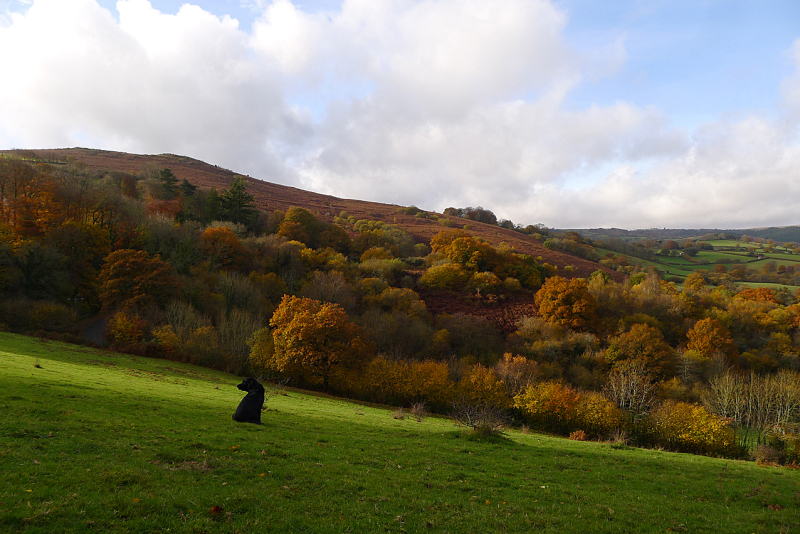 Meldon Hill and the Kestor Valley 4