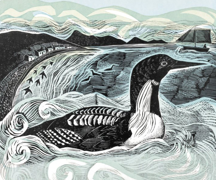 Detail from Black Throated Diver by Angela Harding