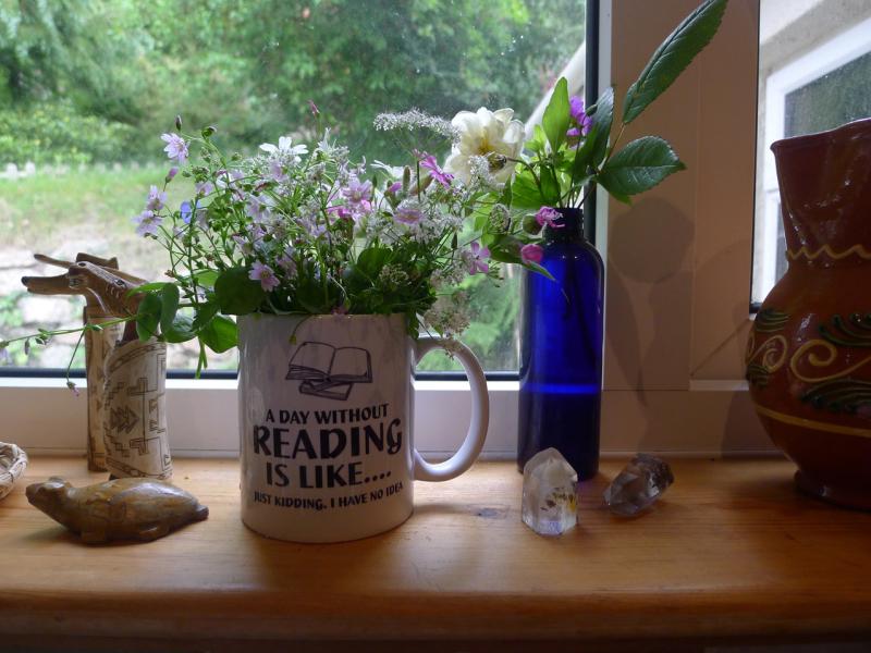 Flowers on the kitchen windowsill