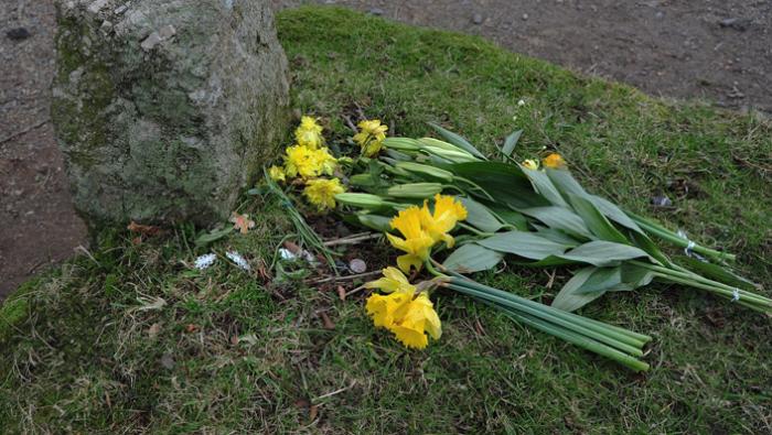 Jay's Grave in spring